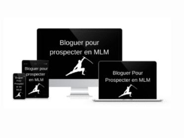 BLOG MLM Académie