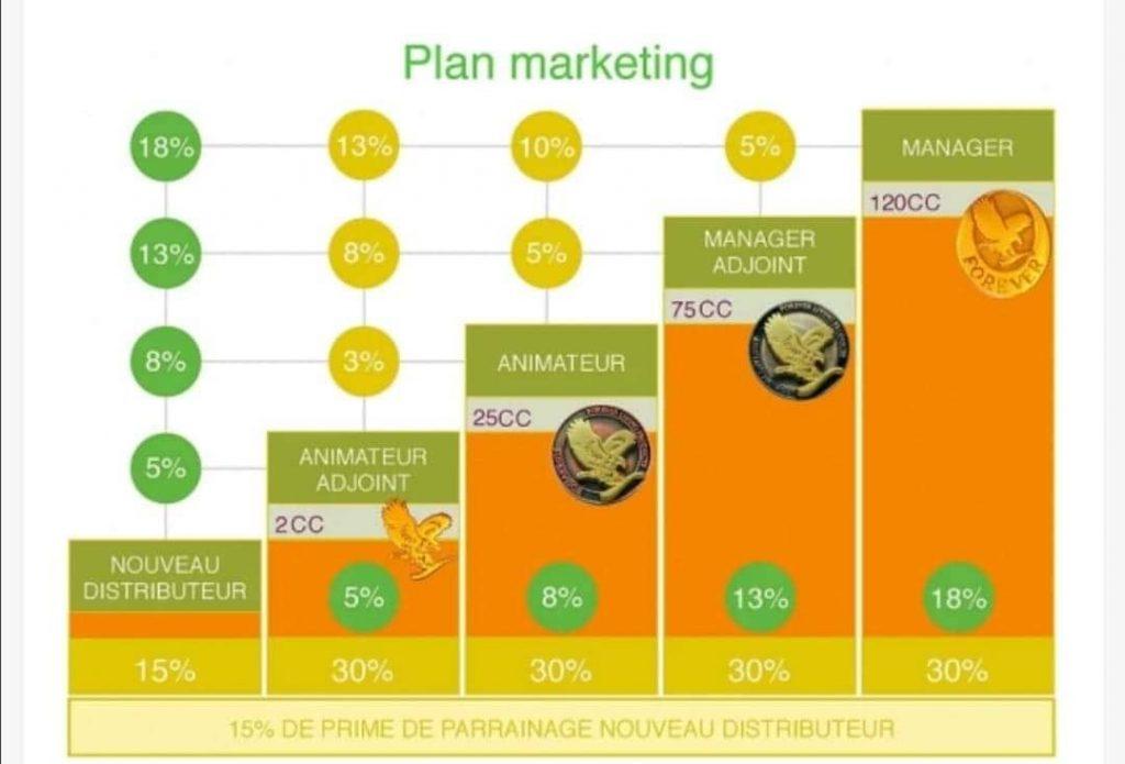 Plan marketing Aloe Vera by Forever