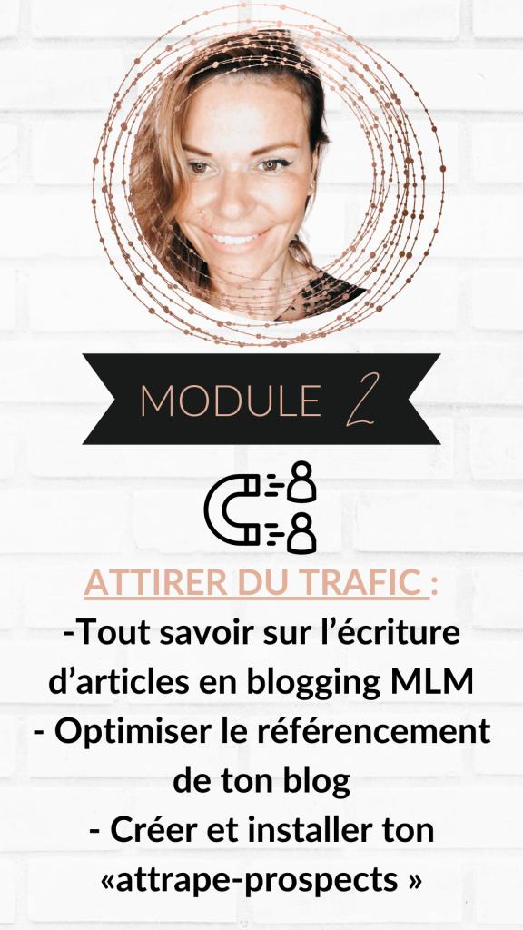 module-2-mlm